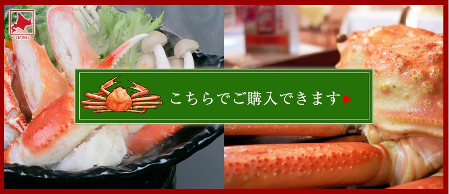 ズワイガニ レシピ|ズワイガニ通販